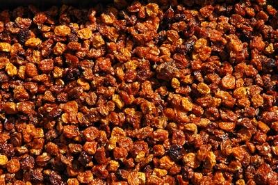 Incabessen (Physalis) gedroogd bak 3 kg  Emmer